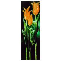 Kunstdruck Tulpen